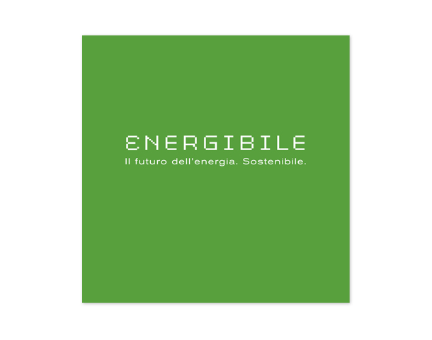 Energibile